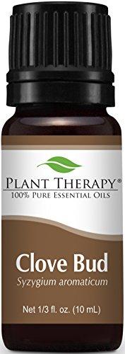 Aceite esencial de brote de clavo de olor. 10 ml. 100% puro, sin diluir, terapéuticas grado.