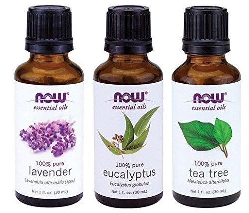 Variedad 3-pack de aceites esenciales de ahora: Tea Tree, eucalipto, lavanda