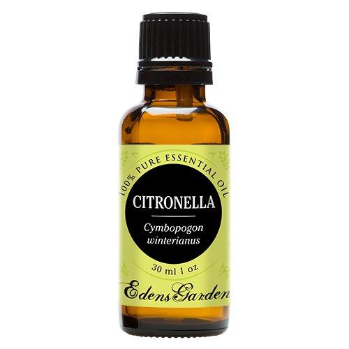 100% puro grado terapéutico esencial cidronela Edens Garden-30 ml