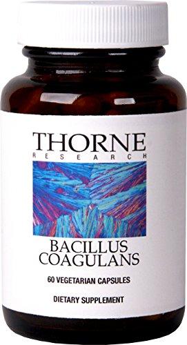 Thorne Research - Bacillus Coagulans (anteriormente Lactobacillus Sporogenes) - suplemento nutricional probiótico - 60 cápsulas vegetarianas