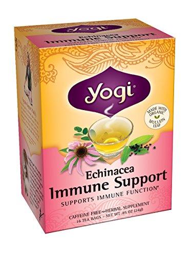 Yogui té, té de 16 bolsas (paquete de 6), la equinácea inmune apoyo