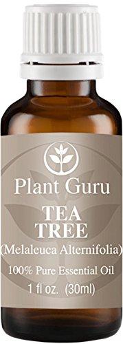 Aceite esencial de Tea Tree (Melaleuca). 30 ml. (1 onza) 100% puro, sin diluir, terapéuticas grado.