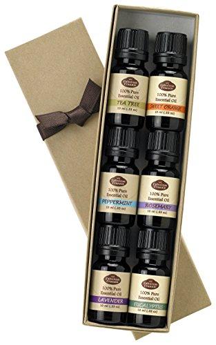 Fabulosa Frannie aceite esencial básico Sampler, 10 ml cada uno, conjunto de 6