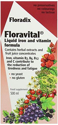 Floradix hierro de Floravital + suplemento líquido de hierbas Extracto de fórmula, 500ml