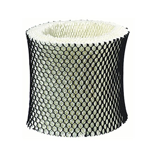 Filtro humidificador