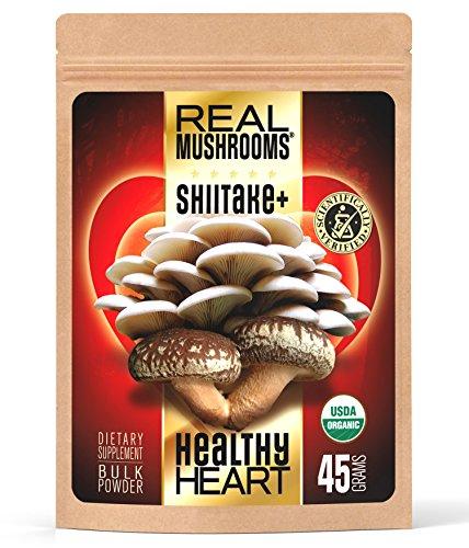 Polvo de extracto de la seta de shiitake por setas Real - seta de ostra extracto polvo - certificada orgánica - 45g a granel polvo de setas - ideal para batidos, Smoothies, café y té