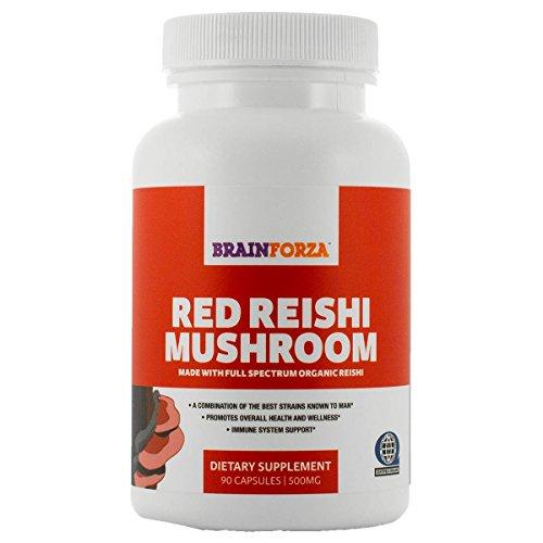 BrainForza rojo Reishi 100% certificado Orgánica 4-tensión, 90 Caps de Veggie