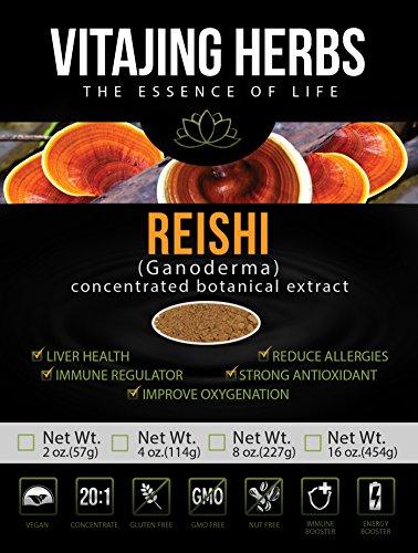 Extracto de la seta de Reishi polvo 20:1 concentración orgánica (4oz - 114 mm) 100% puro - Ganoderma Lucidum, Lingzhi, no-GMO, libre de Gluten, Vegano