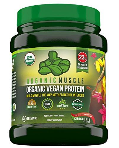 Mezcla orgánica de proteína vegetal orgánico de 100% vegano - Natural Chocolate sabor con 23g de proteína - proteína en polvo con proteína de cáñamo, proteína de arroz, proteína de Sacha Inchi, semillas de chía y más-25 porciones