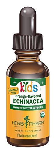 Hierba Pharm niños Glycerite líquido Extracto de equinácea certificada orgánica-sin Alcohol