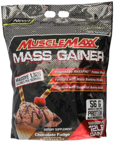 Muscle Maxx muscular masa Maxx Gainer Chocolate Fudge 12 Lbs