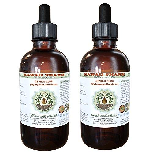 Club de diablo del club líquido extracto del diablo (horridus de Oplopanax) seca raíz corteza Glycerite Hawaii Pharm Natural Herbal suplemento 2 x 4 oz