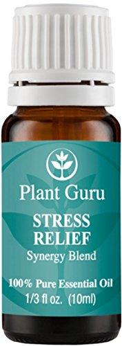 Estrés socorro sinergia mezcla aceite de esencial. 10 ml. 100% puro, sin diluir, terapéuticas grado. (Bergamota, pachulí, naranja dulce, Ylang ylang, Rosa pomelo, Gurjum)