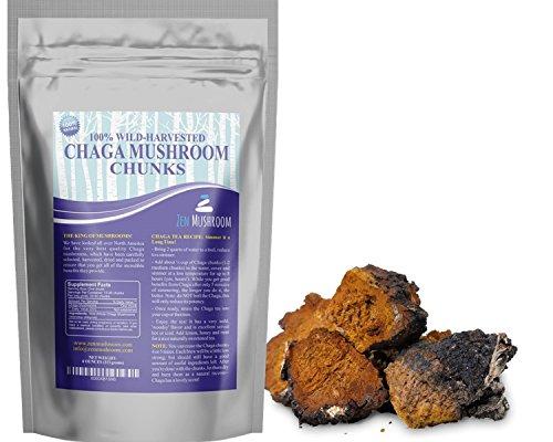 Trozos de seta de Chaga, Silvestre crecidos sólo en los Estados Unidos y Canadá. Nunca cultivado. 4 onzas elabora 50 + tazas de té Natural. Hacer extracto, polvo. Antioxidantes más alto, cosechados sostenible. Wildcrafted.