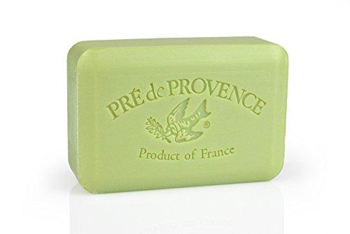 Pre De Provence 250 gramos jabón Citrus Bar - té verde