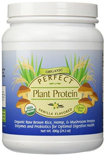 Planta perfecta basado en proteína orgánica ~ sabor vainilla ~ contiene orgánica arroz, cáñamo y setas proteína cruda 690g