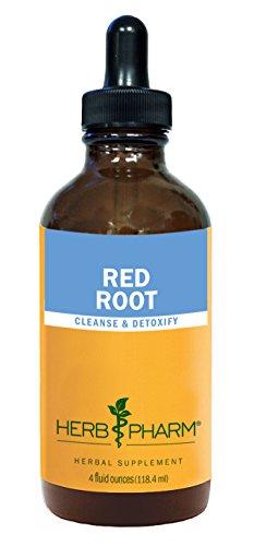 Extracto de raíz de hierba Pharm rojo para la limpieza y desintoxicación - 4 onzas