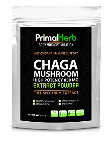 Wildcrafted Chaga Extracto de seta - potente 30: 1 y 40% polisacáridos - poderoso antioxidante - apoyo inmune - porciones 120 - 100% garantía!