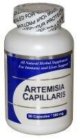 Artemisia Capillaris (100 cápsulas) - extracto concentrado de hierbas - suplemento - 3 Pack