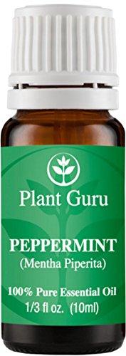 Menta aceite esencial 10 ml. 100% puro, sin diluir, terapéuticas grado.