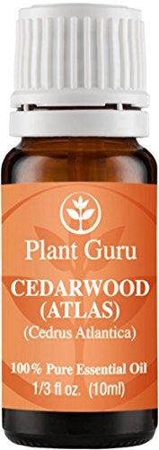 Aceite esencial de madera de cedro (ATLAS). 10 ml. 100% puro, sin diluir, terapéuticas grado.