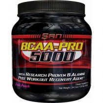 BCAA PRO 5000 POST WORKOUT 690 GRAMOS