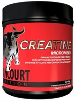 CREATINE MICRONIZED 525 GRAMOS